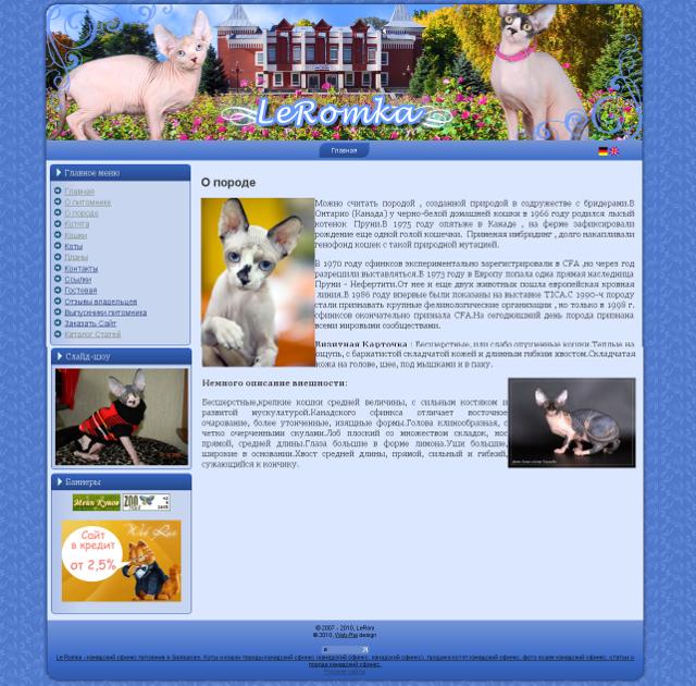 http://web-rai.ru/images/site/Raboty/2010/leromka.png