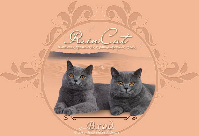 http://web-rai.ru/images/site/Raboty/2010/raincat_3.jpg