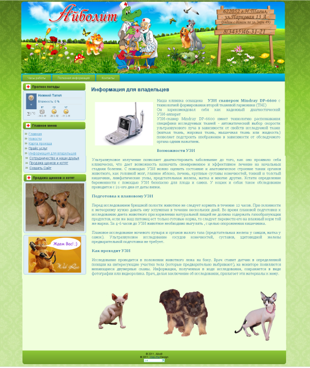 http://web-rai.ru/images/site/Raboty/2011/aibolit.png