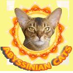 http://web-rai.ru/images/site/Raboty/2011/logo_abispirit.png