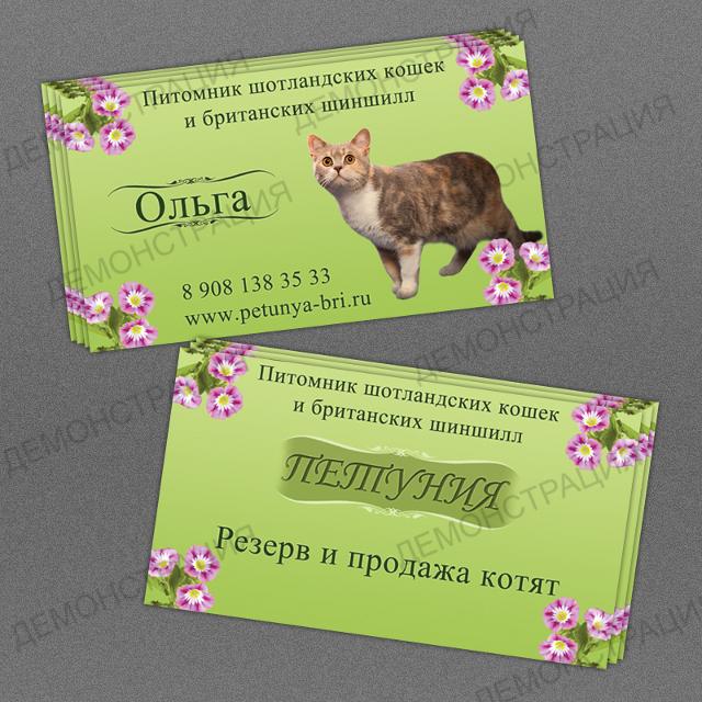 http://web-rai.ru/images/site/Raboty/2011/vizitka_petunya.jpg