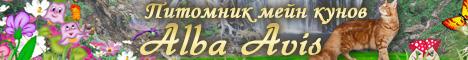 http://web-rai.ru/images/site/Raboty/2012/468x60_albacoon.jpg