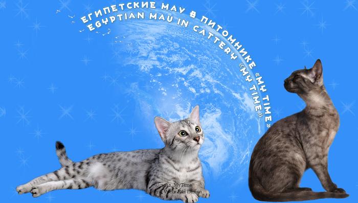 http://web-rai.ru/images/site/Raboty/2012/egipmau.png