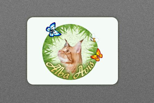 http://web-rai.ru/images/site/Raboty/2012/logo_albacoon3.jpg