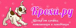 http://web-rai.ru/images/site/Raboty/2014/260x97_kroxi.jpg