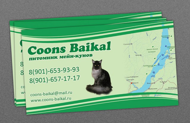 http://web-rai.ru/images/site/Raboty/vizitki/baikal_vizitka1-1.jpg
