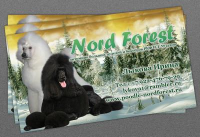 http://web-rai.ru/images/site/Raboty/vizitki/vizitka_nordforest_2.jpg