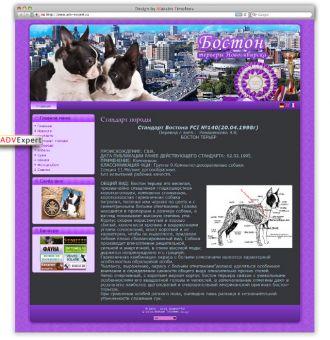 http://web-rai.ru/images/thumbnails/images/site/Raboty/2010/boston-330x340.jpg