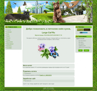 http://web-rai.ru/images/thumbnails/images/site/Raboty/2010/large-cat-330x308.png