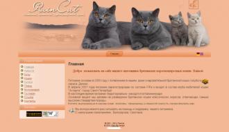 http://web-rai.ru/images/thumbnails/images/site/Raboty/2010/raincat-330x191.png