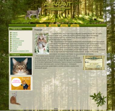http://web-rai.ru/images/thumbnails/images/site/Raboty/2011/amarant-380x367.png