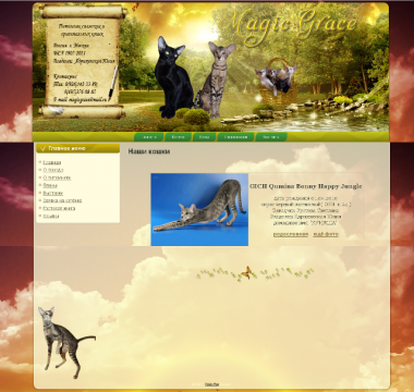 http://web-rai.ru/images/thumbnails/images/site/Raboty/2011/magic-380x360.png