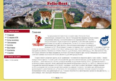 http://web-rai.ru/images/thumbnails/images/site/Raboty/2012/klk_felisbest-380x265.png